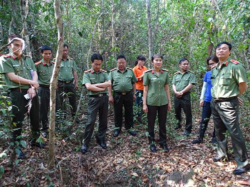 Khảo sát thực tế địa điểm đề xuất phục hồi, tôn tạo Di tích Căn cứ  Ban An ninh Khu miền Đông Nam Bộ và Bệnh xá Ban An ninh  Trung ương Cục miền Nam